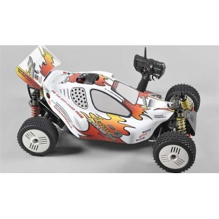 FG Leopard 2 Buggy, 2WD, RTR