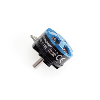 ULTRA MARINE Brushless Motor 1600KV